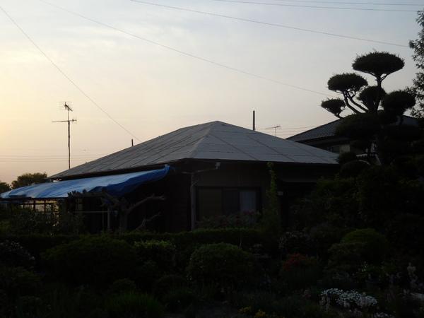 DSCN0794.JPG